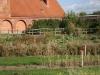 kloster_jerichow_klostergarten_81