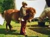 klaus-pferd