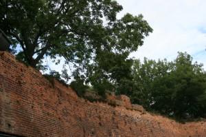 In der Stadtmauer sieht man sehr gut die Aussparungen in welche der Wehrgang eingehängt wurde. Tangermünde